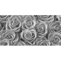 Roses Grey Glass Dekor 30x60